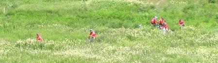 Cyklar i bomsterfält