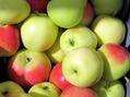 Äpplen som håller doktorn borta