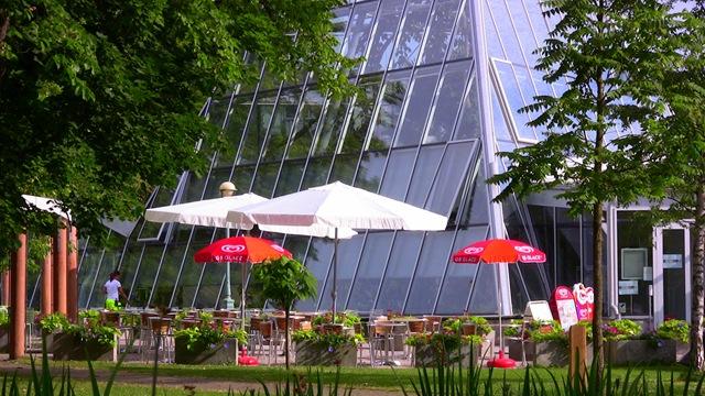 hemsida ledsagare knädans i Linköping