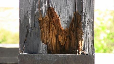 Ruttnat trävirke