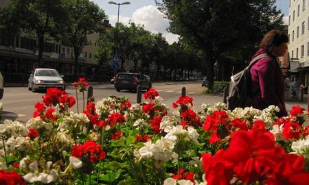 Rikligt med välskötta blommor