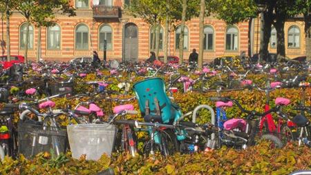 """Cyklparkering med cyklar med rosa """"mössor"""""""