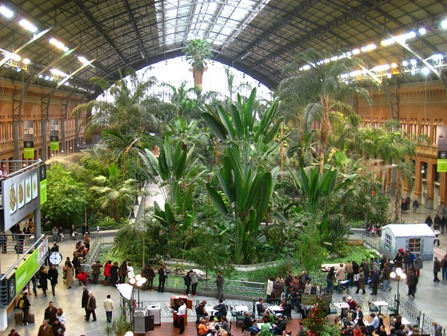 Invernadero de Atocha, Madrid, Spain. I took this photograph. ( Daderot )