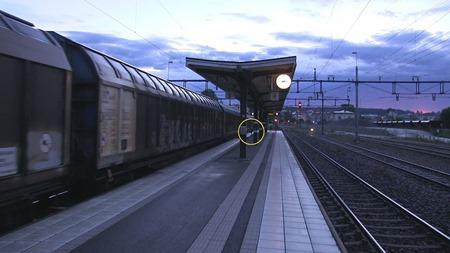 På videon kan man se att ett föremål kastas in under tåget